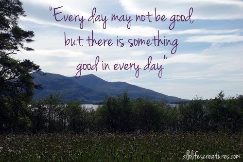 every-day-may-not-be-good-but-there-is-something-positive-in-every-day