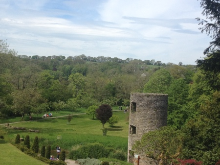 Blarney-Castle-Gardens