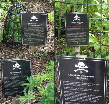 Blarney-Poisonous-Gardens