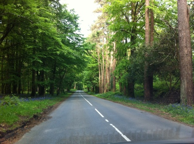 driving-in-killarjey-ireland