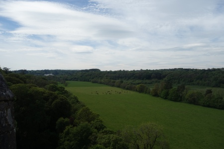 View-from-Blarney-Castle-2